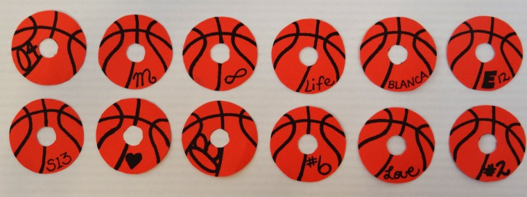 Different Basketball Designs.jpg