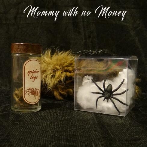 Spider Legs-Plastic Spider Legs and Fur.jpg